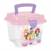 (AA) MINI BOX PRINCESAS-2 1L (R:453) - 01UN